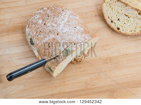 Piece and slices of unhealthy moldy bread and Knife on a wooden board