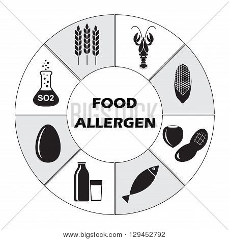 Food allergen icons set on white background. Infographics template.