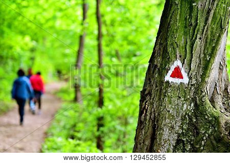 Hiking red triangle paint marking on a tree with hiker on the trail
