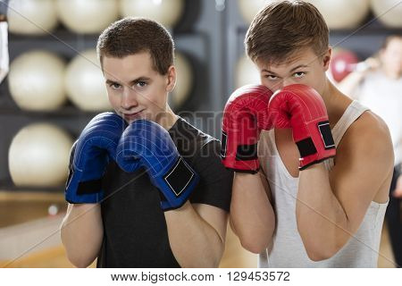 Confident Young Men Boxing In Gym