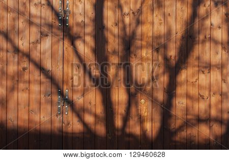 The shadow of a tree on a brown wooden garage door.