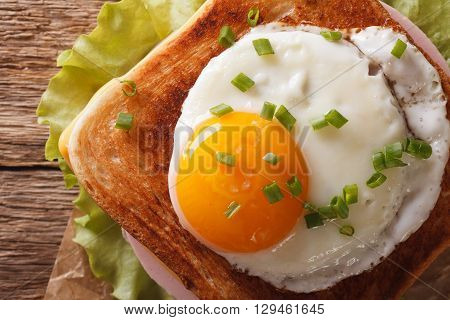 Croque Madame Sandwich With A Fried Egg Close-up. Horizontal Top View