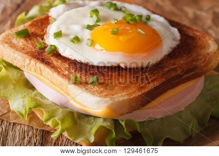 Sandwich With A Fried Egg, Onions, Ham And Cheese Macro. Horizontal