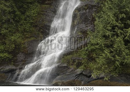 A powerful waterfall cascading down the side of a mountain in a rain forest.