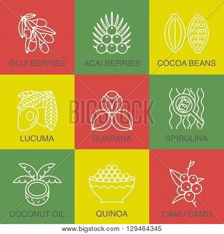 Acai. cocoa, goji, guarana, spirulina, cocnut, quinoa, camu camu. Organic superfoods for health and diet.