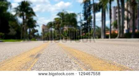 Low Angle View Of Road