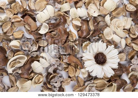 Potpourri layed out on a white surface