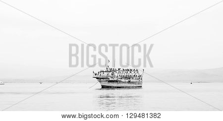 An old boat in the middle of the Paracas bay colonized by birds