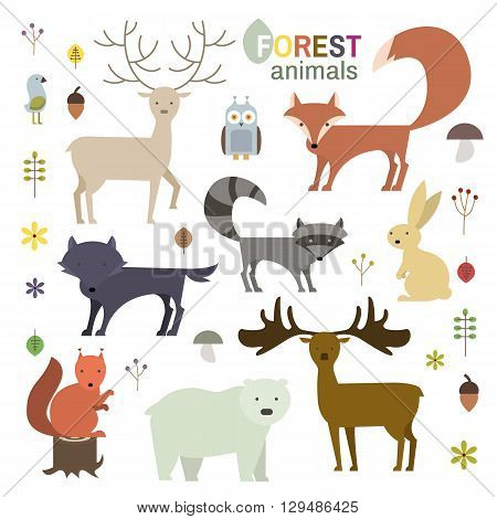 Forest animals set in flat style. Wolf fox raccoon owl deer bear squirrelmoose hare isolated on white. Vector Illustration