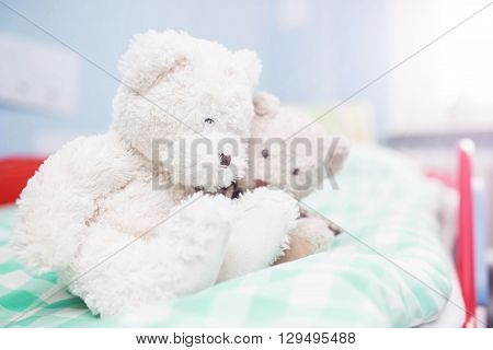 Two White Teddy Bears