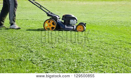 Lawn mower mower grass equipment mowing gardener care work tool