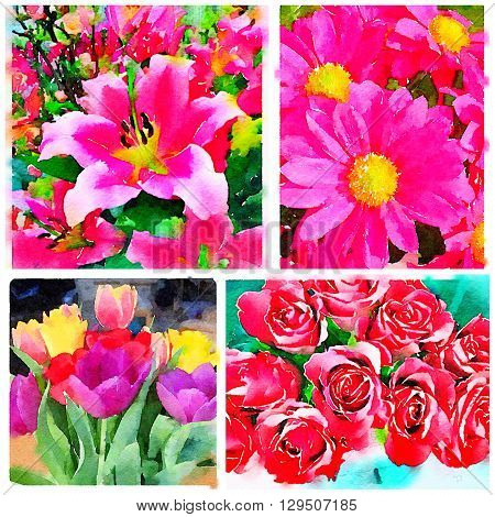Collage of four digital watercolor paintings of flowers including tulips roses daisies and lilies.
