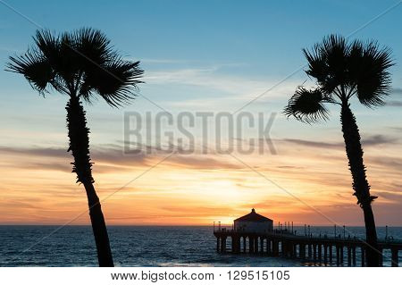 Tropical palms sway in breeze under colorful sunset on Manhattan Beach Californian beaches.