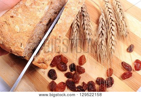 Slicing fresh baked wholemeal bread ears of wheat and heap of raisins lying on cutting board concept of healthy eating