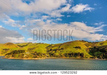 New Zealand scenic coastline landscape - A happy sunny day at Otago Region Southern island New Zealand