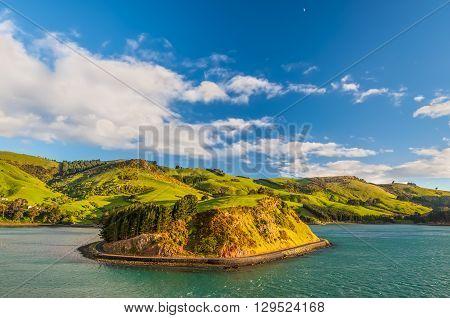 New Zealand coastal landscape - A happy sunny day at Otago Region Southern island New Zealand