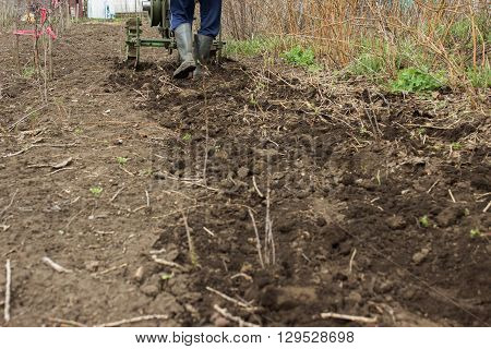 Man Working In The Garden With Garden