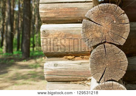 The House From A Log