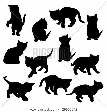 Collection of vector kitten silhouettes isolated on white.
