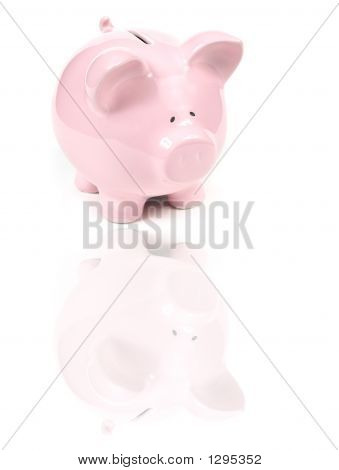 Pink Piggy Bank With Reflexion