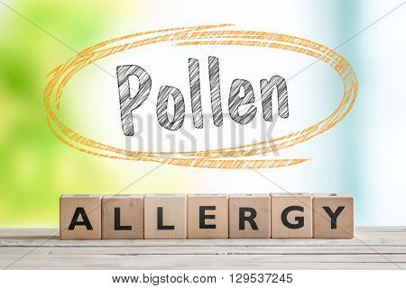 Pollen Allergy Headline With A Wooden Sign