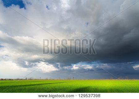 heavy clouds over the field /  bright colorful picture ukraine field