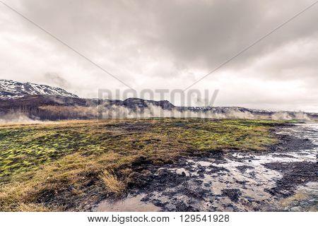 Steamy Fields In Iceland