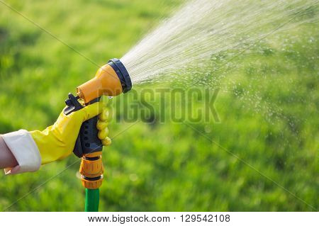 Hand with garden hose watering plants gardening concept