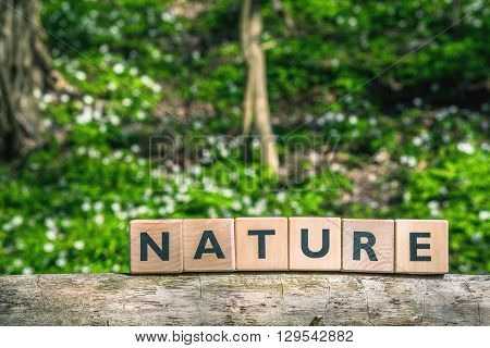 Nature Sign In A Green Forest