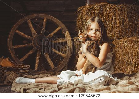 The beautiful girl with a cat about hay. Studio shot.