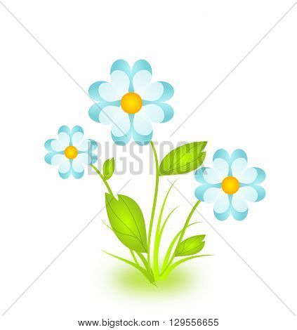 Beautiful flower illustration on white background isolated