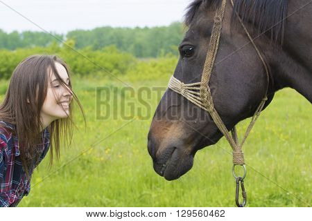 Friendship between teenager girl and brown mare