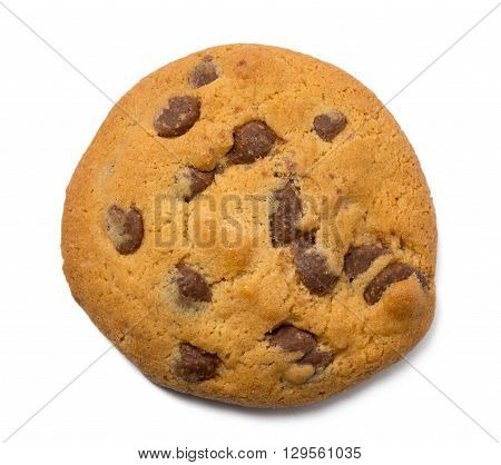Single Chocolate Chip Cookie isolated on white background closeup.