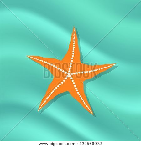 Plenty of Cushion Starfish on a Ocean Floor. Caribbean Starfish on Azure Background