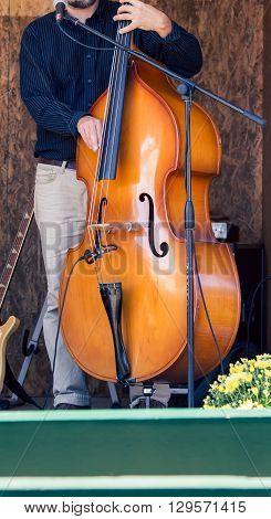 Fingers strumming the strings of wooden cello