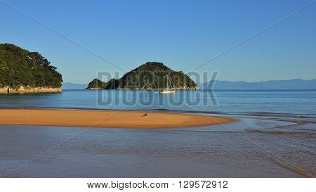 Scene in the Abel Tasman National Park New Zealand. Onetahuti Bay and Tonga Island. Sandy beach.