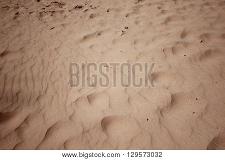 Drifting sand in Sleeping Bear Dunes National Lakeshore, Michigan.