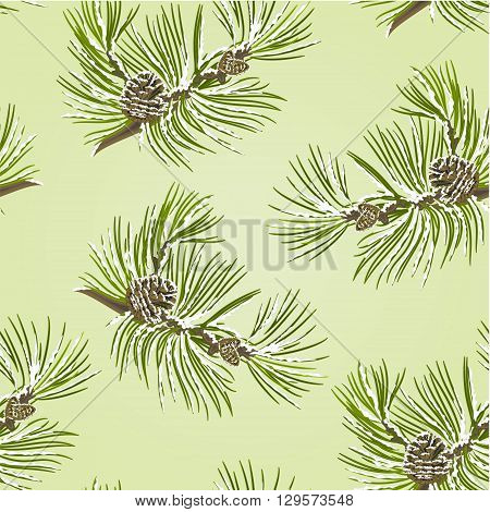 Seamless texture branch Pine tree with pine cones with snow vector illustration