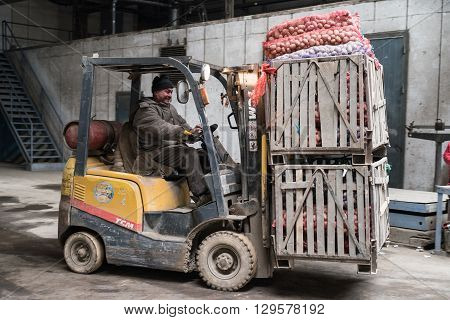 Saint-Petersburg Russia - April 15 2016: Loader weighing boxes with potatoes on an industrial scale in the vegetable store.