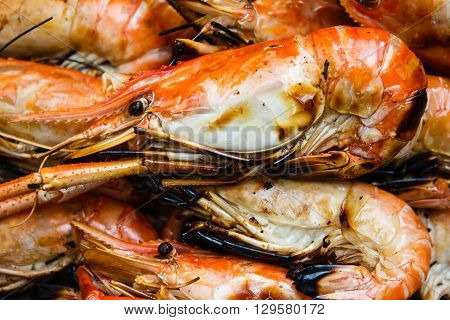 Grilled Shrimps.