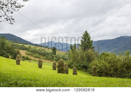View from the red trail to the top of Luban Mountain, Poland