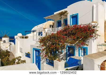 Picturesque view of white and blue houses and windmill in Oia or Ia, island Santorini, Greece