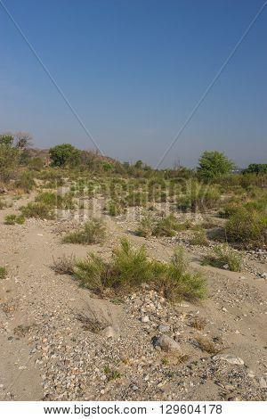 Sand And Gravel Desert Wash