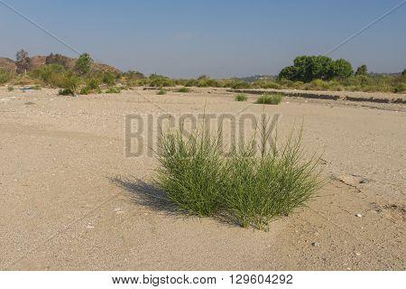 Empty Riverbed Of Santa Clarita