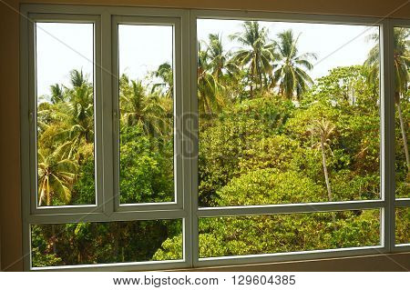 beautiful tropical view on palm thai forest from the window