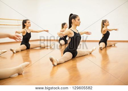 Group of women in leotards doing some stretching and warming up during dance class