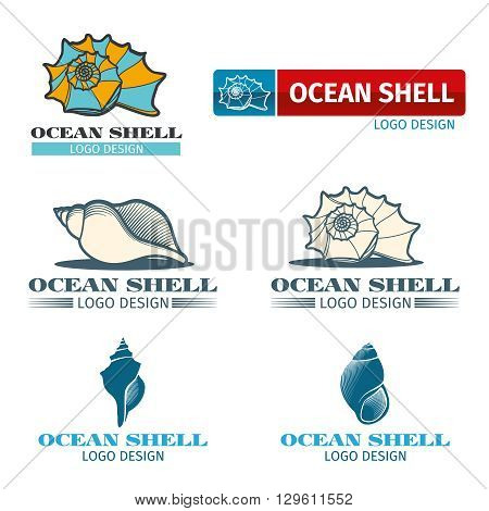 Shell vector design logo set. Ocean shell logo, ocean shell element, ocean shell collection illustration
