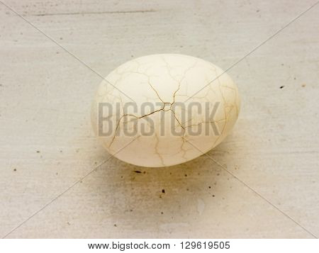The cracked chicken egg.