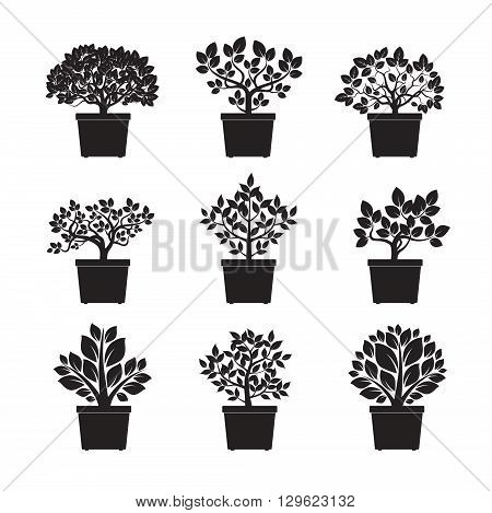 Set of Black flowers in pot. Vector Illustration and Icon.