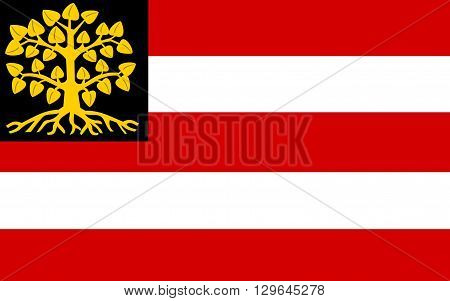 Flag of 's-Hertogenbosch is a city and municipality in the southern Netherlands. It is the capital of the province of North Brabant.